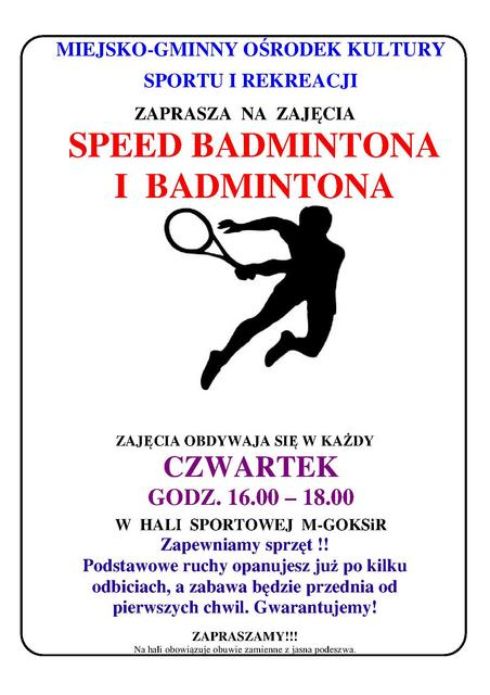 speed badminton.jpeg