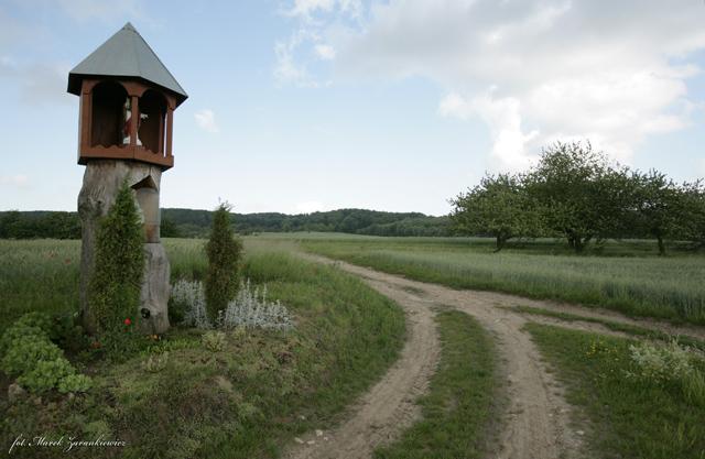 Kapliczka wsródpolna w Oleszce.jpeg