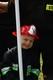 Galeria Zawody strażackie OSP 2016